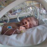 bebe incubadora