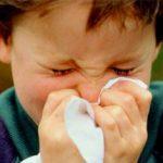 ¿Tus hijos son alérgicos? Esta noticia te interesa