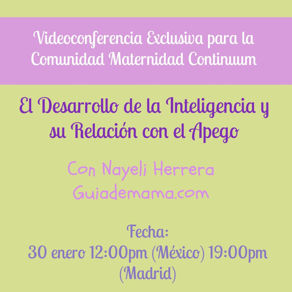 Cartel_Videoconferencia_nayeli