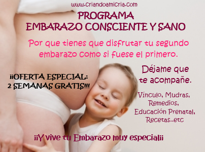programa embarazo