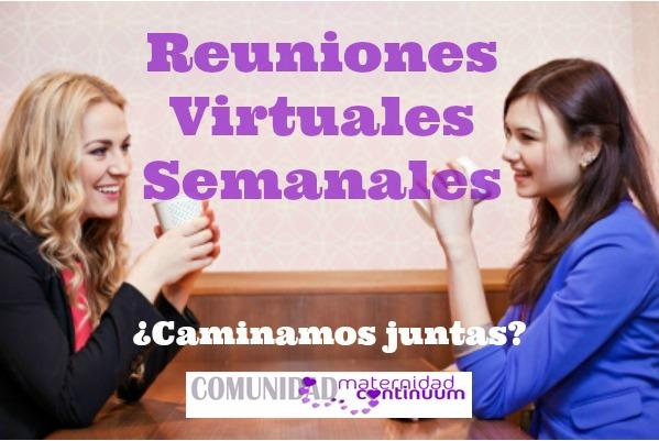 Cartel_reuniones_virtuales