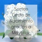 Ganador del Sorteo de la Cesta de nacimiento gracias a Mayoflor