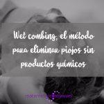 Wet combing, el método para eliminar piojos sin productos químicos