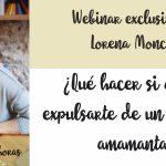 Webinar gratuito con Lorena Moncholi: ¿Qué hacer si quieren expulsarte de un lugar por amamantar?